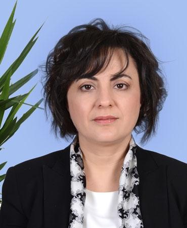 Av. Pınar Ayşe Aras